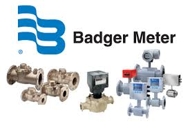 Terry Petski  |  Director – Supply Chain Management at Badger Meter